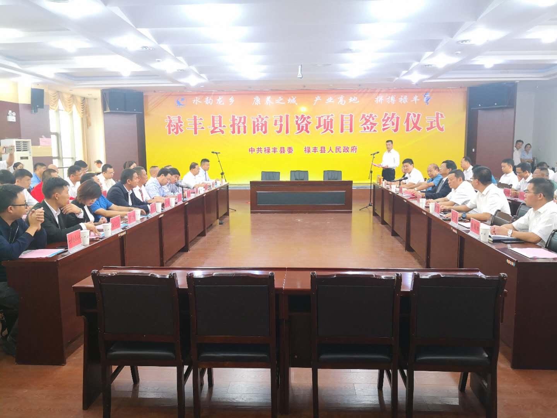 禄丰县成功签约16个投资协议,预计总投资达63.5亿元